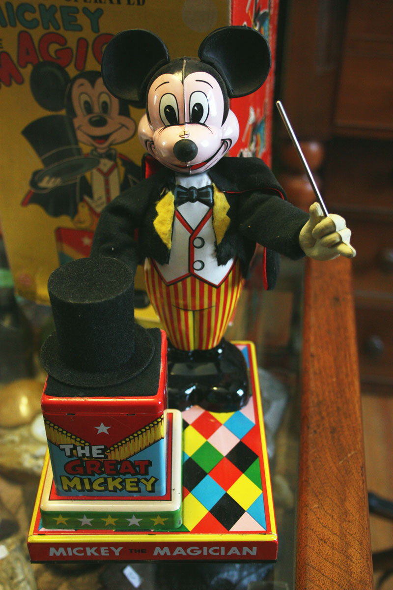 Mickey the Magician