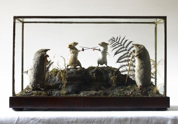 Anthropomorphic Taxidermy
