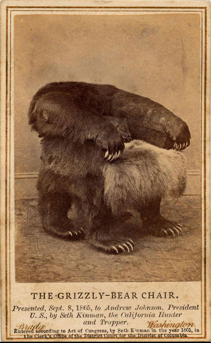 Grizzly-Bear-Chair-cabinet-of-curiosities-1a