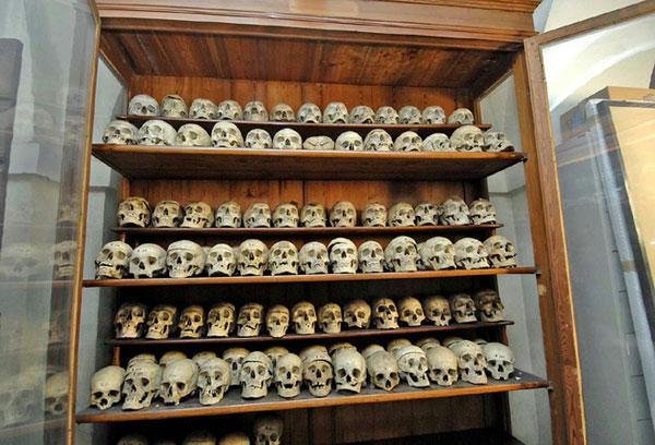 Cesear-skulls
